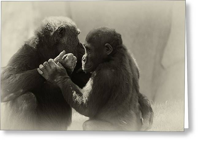 Ape Photographs Greeting Cards - Shall We Dance Greeting Card by Camille Lopez