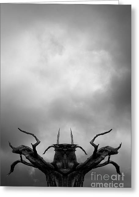 Anthropomorphic Digital Greeting Cards - Shamanic Tree and Clouds Greeting Card by David Gordon
