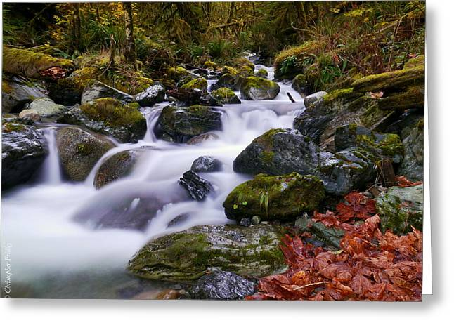 Christopher Fridley Greeting Cards - Shannon Creek Greeting Card by Christopher Fridley