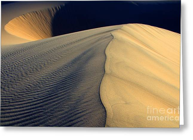 Sand Dunes National Park Greeting Cards - Shape Shifter Death Valley California Greeting Card by Bob Christopher