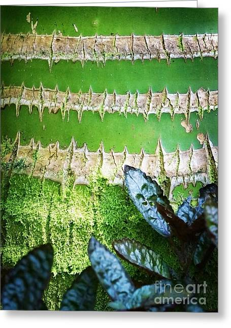 Shapes Of Hawaii 13 Greeting Card by Ellen Cotton