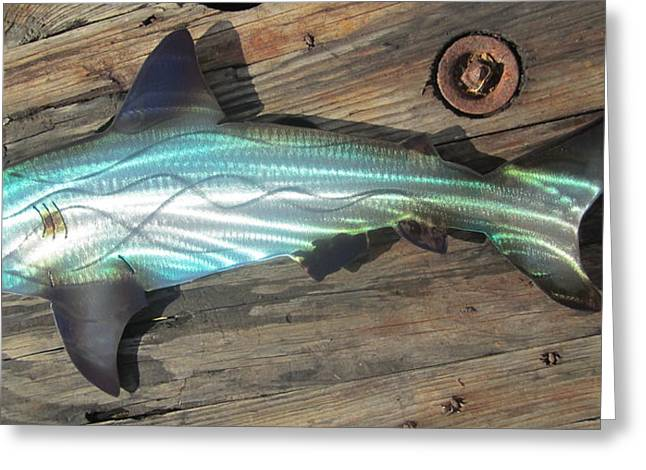 Tropical Island Sculptures Greeting Cards - Shark abstract metal wall art Greeting Card by Robert Blackwell