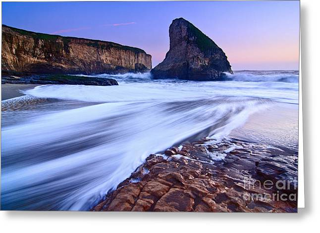 Sharks Cove Greeting Cards - Shark Fin Tide - Santa Cruz California Greeting Card by Jamie Pham