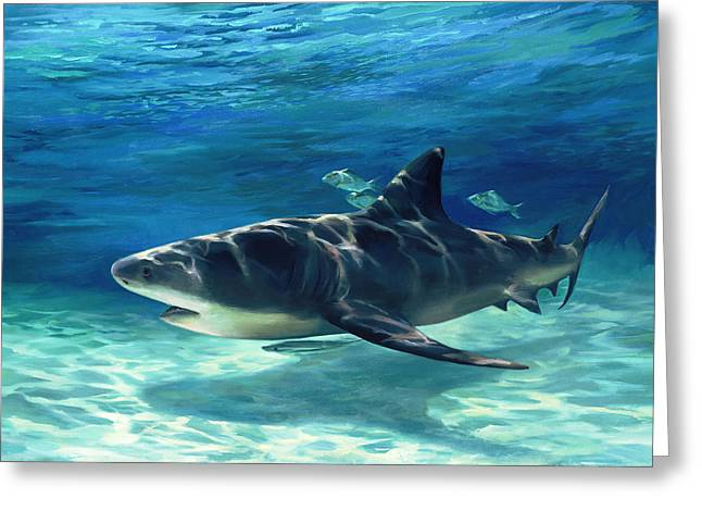 Fish In Ocean Greeting Cards - Shark in Depth Greeting Card by Laurie Hein
