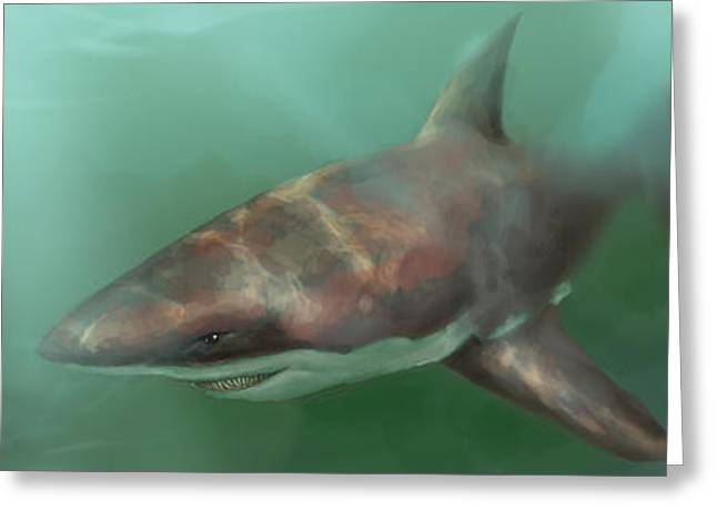 Fish Digital Greeting Cards - Shark Greeting Card by Miguel Osorio