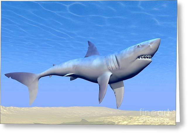 Ocean Predator Greeting Cards - Shark Swimming Underwater Greeting Card by Elena Duvernay