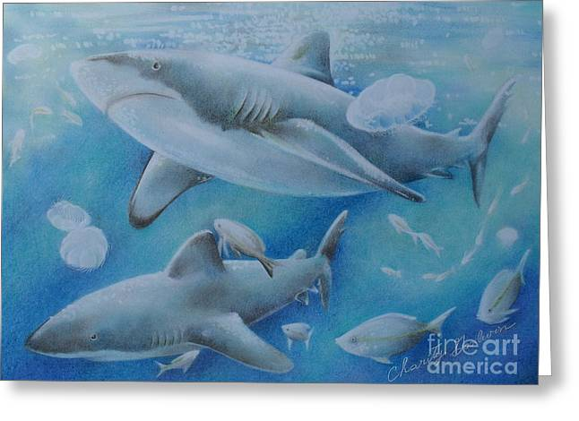 Predaceous Greeting Cards - Sharks at Lunch  Greeting Card by Charity Goodwin