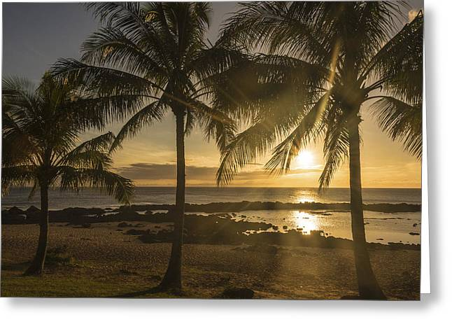 Blue Green Wave Greeting Cards - Sharks Cove Sunset 3 - Oahu Hawaii Greeting Card by Brian Harig