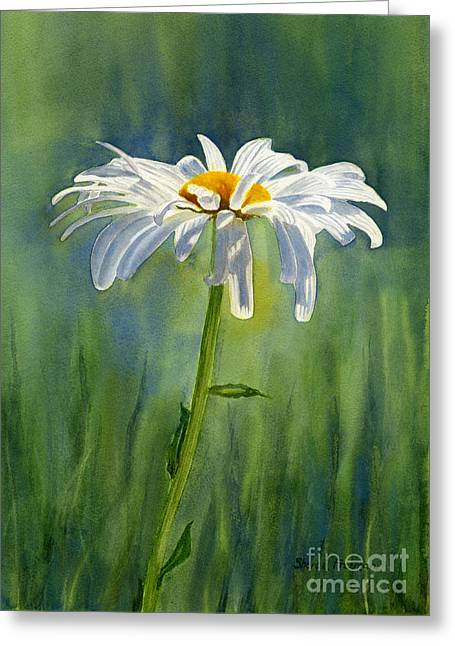 White Paintings Greeting Cards - Shasta Daisy Flower with Blue Green Background Greeting Card by Sharon Freeman