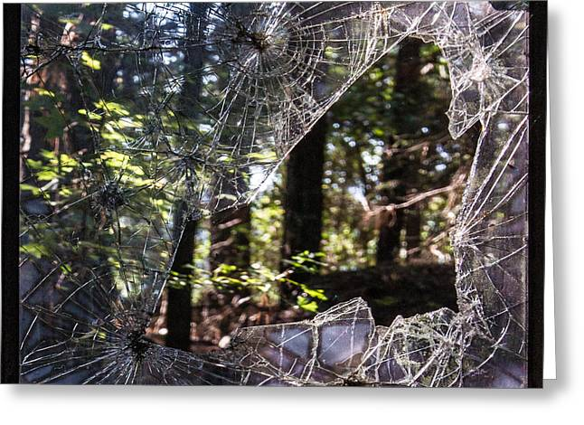 Shattered Greeting Cards - Shattered Glass Frame of Woods Greeting Card by Douglas Barnett
