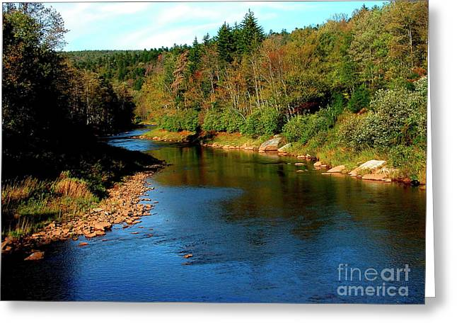 Cheat Greeting Cards - Shavers Fork of Cheat River Greeting Card by Thomas R Fletcher