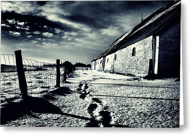 Rural Snow Scenes Photographs Greeting Cards - She Walked Away  Greeting Card by Stylianos Kleanthous