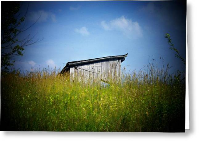 Shed Photographs Greeting Cards - Shed in Field Greeting Card by Joyce Kimble Smith