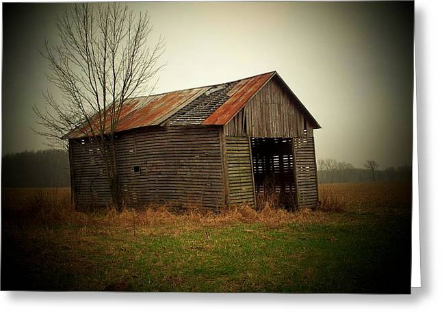 Shed Greeting Cards - Shed In Pasture Greeting Card by Michael L Kimble