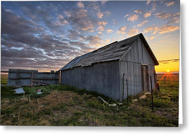 Wooden Shed Greeting Cards - Shedded Rising Greeting Card by Thomas Zimmerman