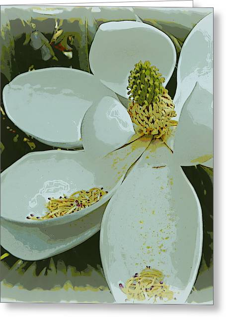 Shed Digital Art Greeting Cards - Shedding Magnolia Greeting Card by Sheri McLeroy