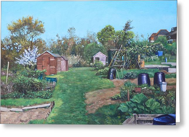 Shed Paintings Greeting Cards - Sheds on allotments at Southampton Greeting Card by Martin Davey