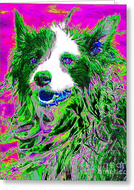 Vicious Greeting Cards - Sheep Dog 20130125v2 Greeting Card by Wingsdomain Art and Photography