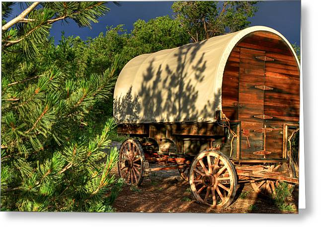 Sheep Herder's Wagon Greeting Card by Donna Kennedy