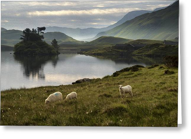 Boundary Waters Greeting Cards - Sheep in field at sunrise digital painting Greeting Card by Matthew Gibson