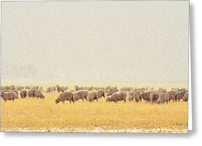 Sheep In Snow Greeting Card by Kae Cheatham