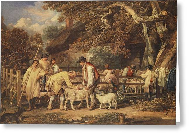 Farmer Drawings Greeting Cards - Sheep Shearing, C.1820 Greeting Card by James Ward