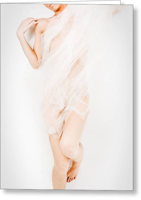 Areal Greeting Cards - Sheer Nude Greeting Card by Jt PhotoDesign