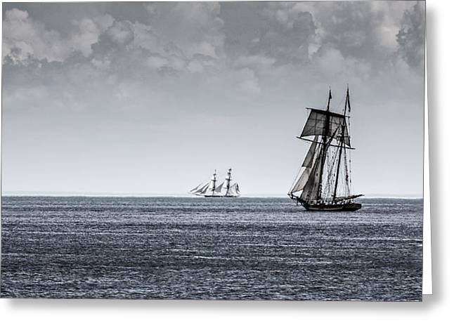 Historic Schooner Greeting Cards - Sheets to the Wind Greeting Card by Keith R Crowley