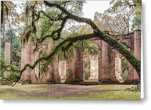 Recently Sold -  - Princes Greeting Cards - Sheldon Church Ruins Beaufort County South Carolina Greeting Card by Dawna  Moore Photography