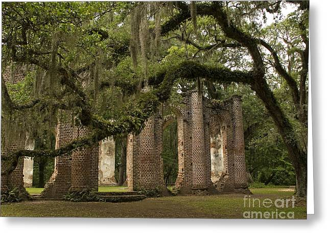 Civil War Site Greeting Cards - Sheldon Church Spanish Moss Greeting Card by Jere Snyder