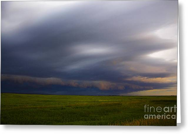 Storm Chasing Greeting Cards - Shelf Cloud Greeting Card by Francis Lavigne-Theriault