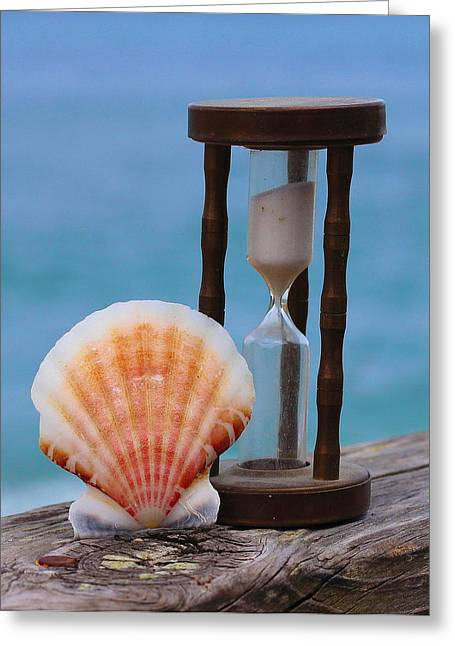 Shells Greeting Cards - Shell and Hourglass Sand Timer  Greeting Card by Cathy Lindsey