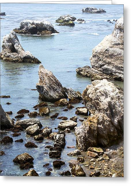 Beach Photos Digital Greeting Cards - Shell Beach Rocky Coastline Greeting Card by Baarbara Snyder