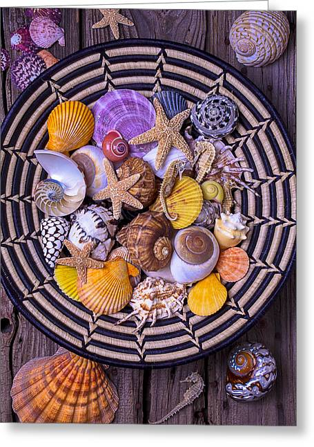 Shell Texture Greeting Cards - Shell Collecting Greeting Card by Garry Gay