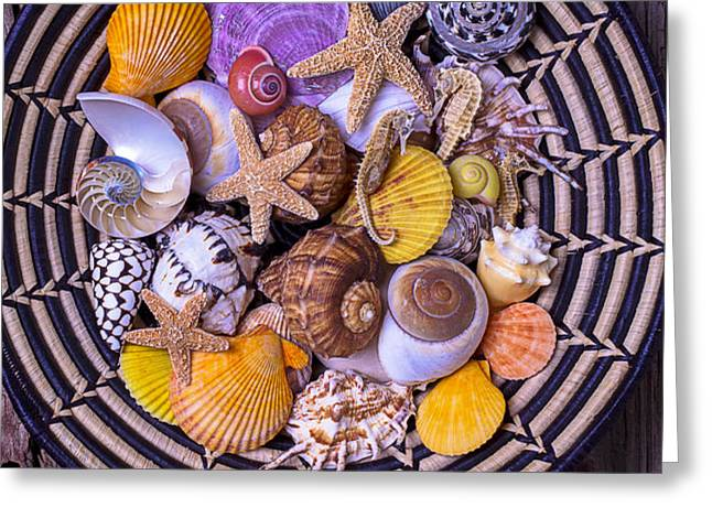 Shell Collecting Greeting Card by Garry Gay