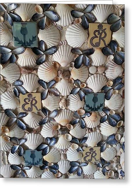 Ocean Photography Greeting Cards - Shells Greeting Card by Fabio Gomes Freitas