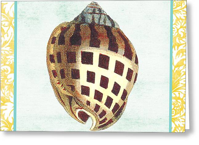 Colored Shell Digital Art Greeting Cards - Shell Finds-B Greeting Card by Jean Plout
