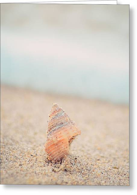 Half Moon Bay Greeting Cards - Shell in the Sand at Half Moon Bay California Greeting Card by Lynn Langmade