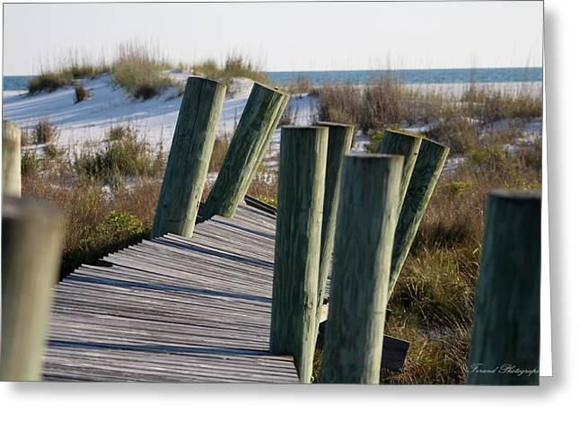 Panama City Beach Greeting Cards - Shell Island Boardwalk Greeting Card by Debra Forand