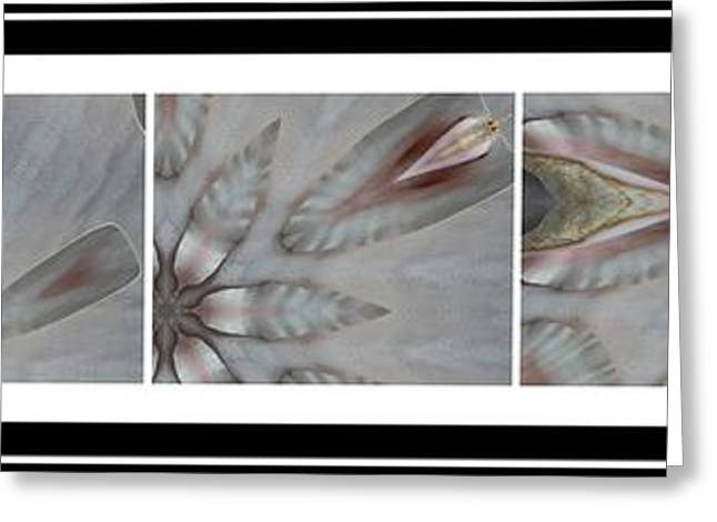 Powder Greeting Cards - Shell Shock Pink Pentaptych  Greeting Card by Barbara Griffin