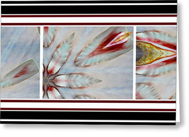 Powder Greeting Cards - Shell Shock Red Pentaptych Greeting Card by Barbara Griffin