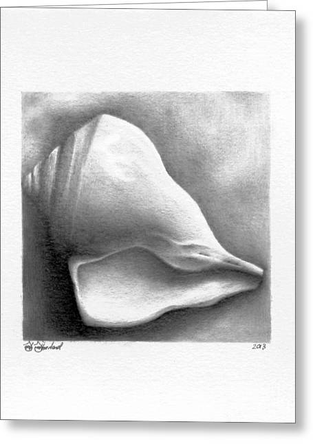 Sea Shell Drawings Greeting Cards - Shell Temporality  Greeting Card by Sarah Sutherland