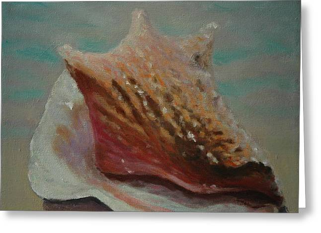 Seashell Picture Paintings Greeting Cards - Shell Three - 3 in a series of 3 Greeting Card by Don Young