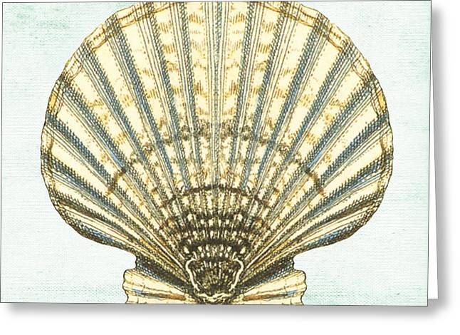 Colored Shell Digital Art Greeting Cards - Shell Treasure-A Greeting Card by Jean Plout