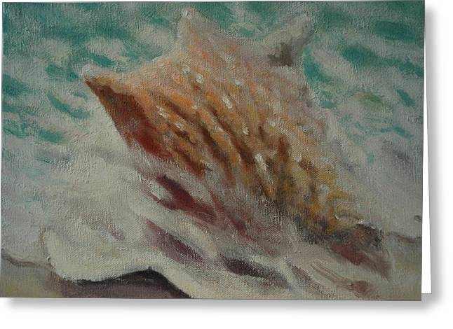 Seashell Picture Paintings Greeting Cards - Shell Two - 2 in a series of 3 Greeting Card by Don Young