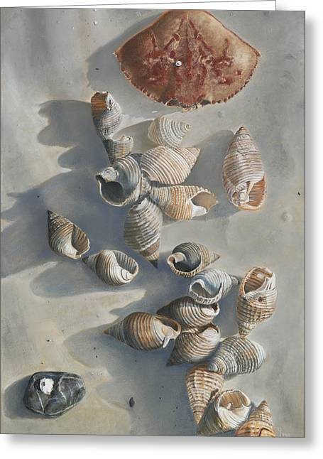 Sea Shell Art Pastels Greeting Cards - Shells on a Sandy Beach Greeting Card by Nick Payne