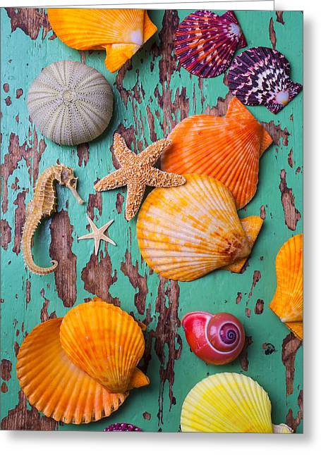 Aquatic Greeting Cards - Shells On Old Green Board Greeting Card by Garry Gay