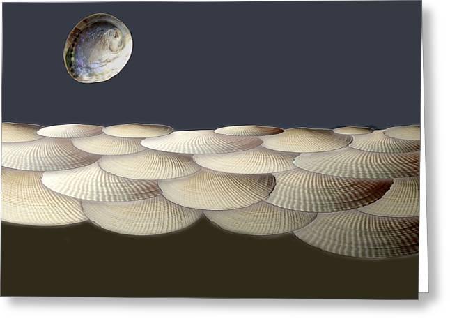 Sea Shell Digital Art Greeting Cards - Shells Sea Greeting Card by Enrique Amat