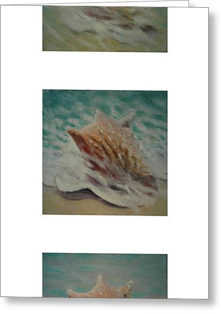 Michelangelo Greeting Cards - Shells Triptych 2 Greeting Card by Don Young