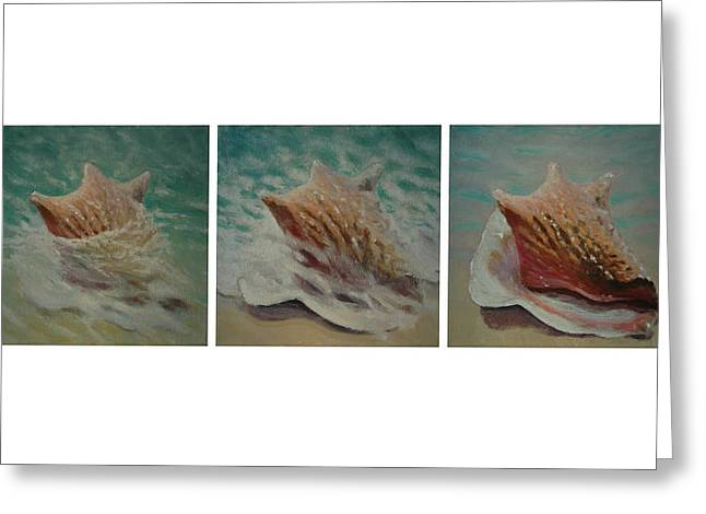 Seashell Picture Paintings Greeting Cards - Shells Triptych Greeting Card by Don Young